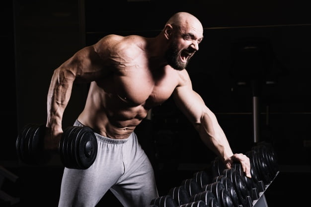 Bodybuilding: Why We Have To Do It ?