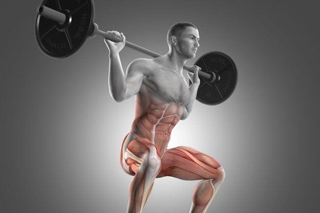 Compound exercise - back squat